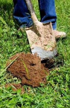 Pages from Susan Orgill SFS MLA Soil handout July21.pdf